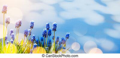 花, イースター, 芸術, 背景, 春