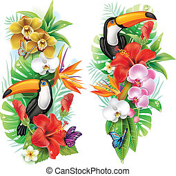 花, トロピカル, 蝶, toucan