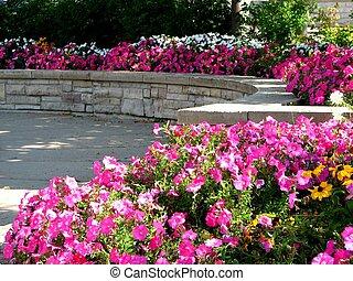 花, 公園