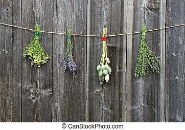 花, 古い, 壁, 木製である, ハーブ, 束, 医学