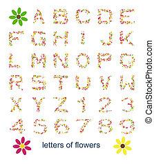 花, 手紙
