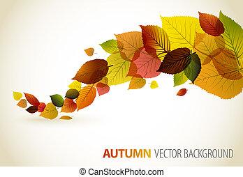 花, 抽象的, 背景, 秋