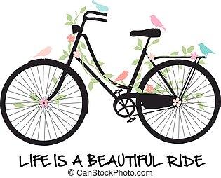 花, 自転車, 鳥