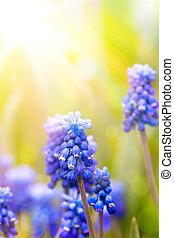 花, 芸術, 背景, 春, 美しい