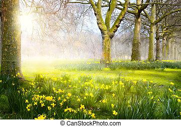 芸術, park;, 春の花, イースター, 風景