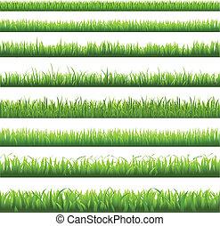 草, ボーダー, 緑