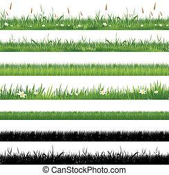 草, 緑, コレクション