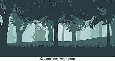 落葉性, ベクトル, イラスト, 森林, 緑