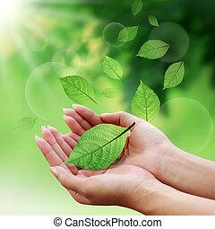 葉, あなたの, 世界, 心配, 手