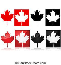 葉, かえで, カナダ