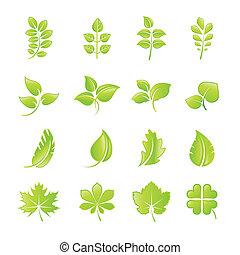 葉, セット, アイコン, 緑
