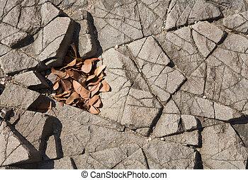 葉, 玄武岩