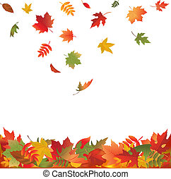 葉, 落ちる, 秋