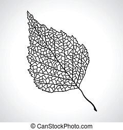 葉, isolated., マクロ, 木, 黒, シラカバ