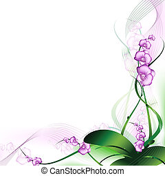 蘭, 紫色