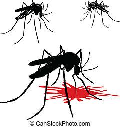 蚊, ヒル