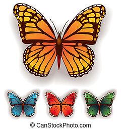 蝶色, 白, 隔離された