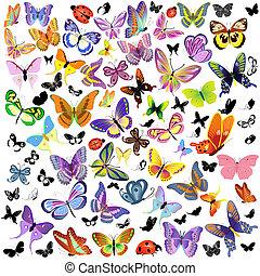 蝶, てんとう虫, セット