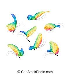 蝶, ベクトル, セット