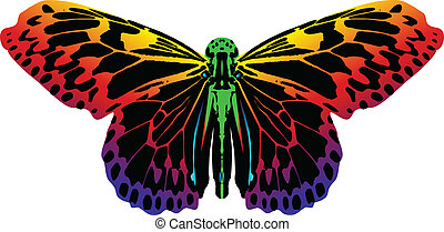 蝶, 白い背景, 隔離された, カラフルである
