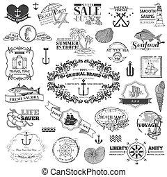 要素, -, calligraphic, ベクトル, デザイン, 海, 海事, スクラップブック