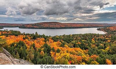 見落とすこと, 湖, 木, 秋, 変化する, 光景