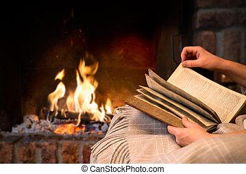読書, 暖炉, 本