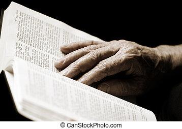 読書, 聖書