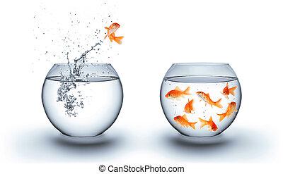 跳躍, 水, から, 金魚