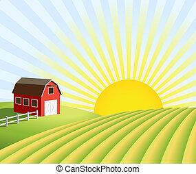 農場, フィールド, 日の出
