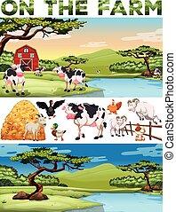 農場, 主題, 農地, 動物