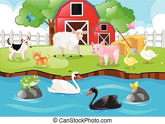 農場, 暮らし, 動物