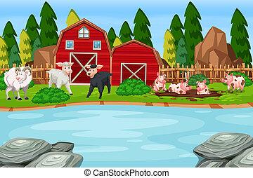 農場, 現場, 動物