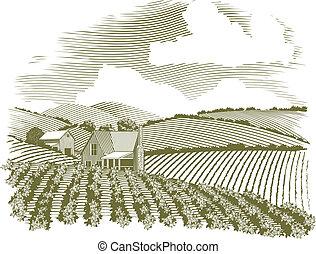 農場, 田園, 木版, 家