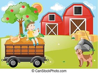 農場, 男の子, 動物, フィールド