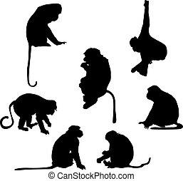 遊び好きである, シルエット, サル