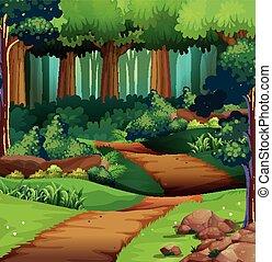 道, 森林, 土, 現場