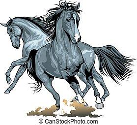 野生の 馬