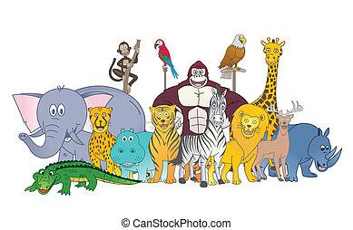 野生, 色, グループ, 動物