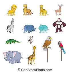 野生, 色, セット, 動物