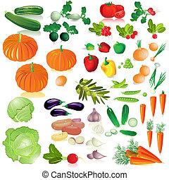 野菜, 隔離された, コレクション