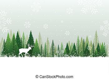 雪が多い, 森林, 背景, 冬