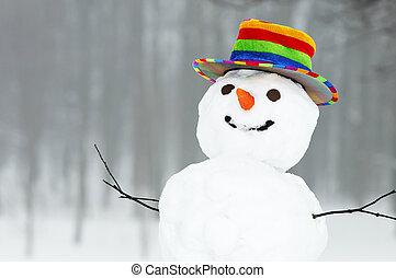 雪だるま, 面白い, 冬