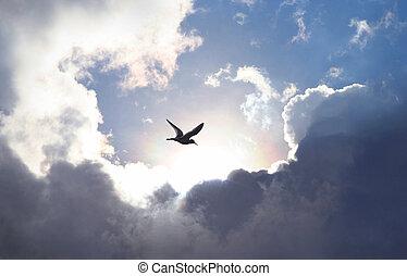 雲, 照ること, 劇的, 形成, 象徴的, 与える, 生活, 空, hope., 鳥, かいば桶, ライト, バックグラウンド。, 飛行, 値