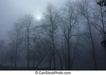 霧が濃い, 川岸