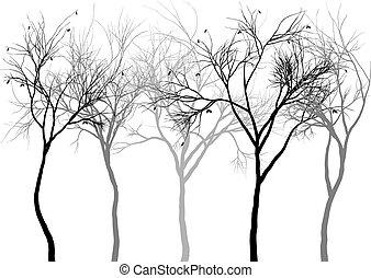 霧が濃い, 森林, ベクトル