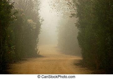 霧が濃い, 道