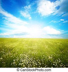 青緑, 空, 牧草地, 下に