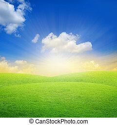 青, フィールド, 緑の空