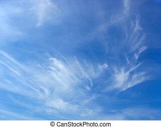 青, 夏, 雲, 空, 高く, 白, 毛状突起